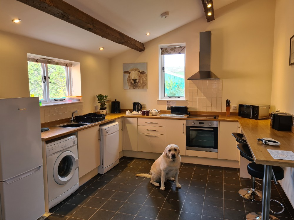 Dogs permitted cottage with a pool  in Heart of England