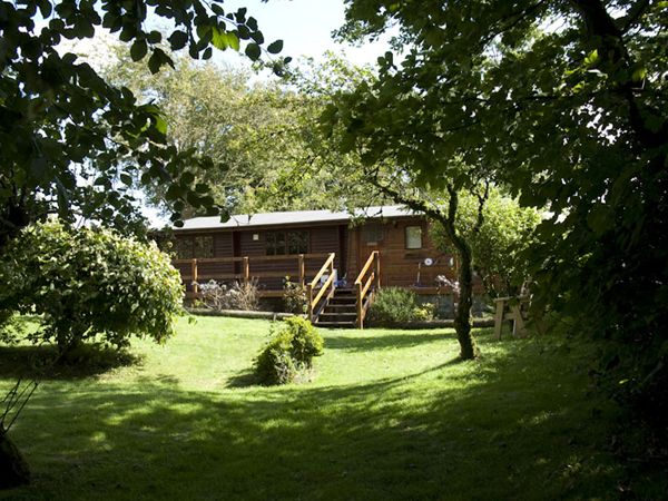 Holiday accommodation + swimming pool  in Wales