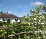 Waterlake Cottage, Orcheston, nr Stonehenge Sleeps 4