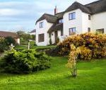Shells Cottage dog friendly holiday cottage, Washford, South West England , Somerset, England