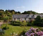Aggies Cottage - Devon