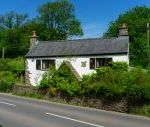 Crooked Lake Cottage - Devon