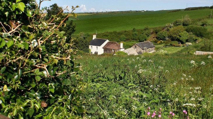 Dittiscombe Holiday Cottages, South Devon - Photo 7