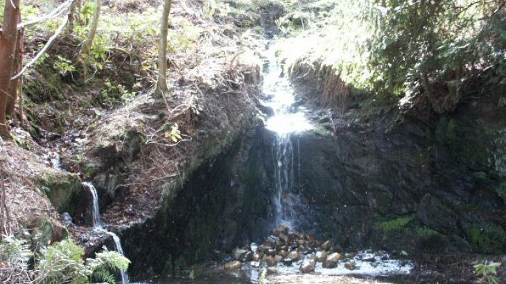 Woodland Waterfalls - Photo 1