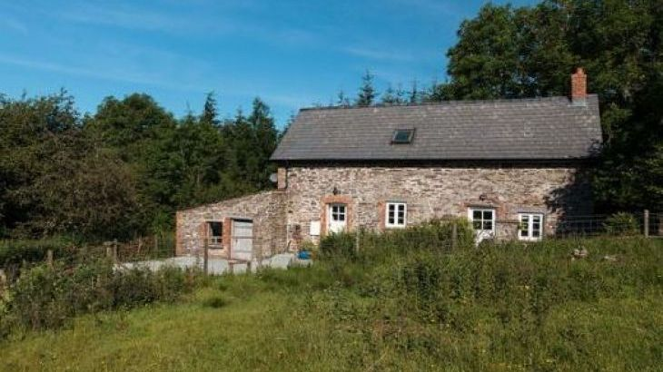 Cefn Y Waun - Cottage in the Woods - Photo 16