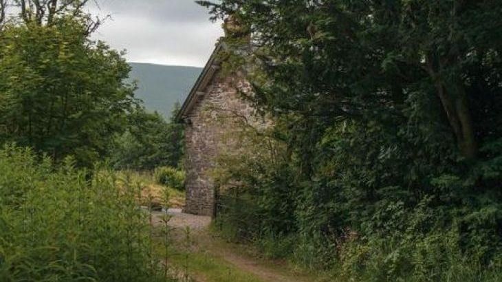 Cefn Y Waun - Cottage in the Woods - Photo 4