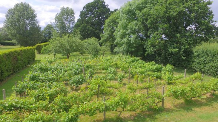 The Cotswold Manor Vineyard, Exclusive Hot-Tub, Games/Event Barns, 70 acres of Parkland - Photo 13