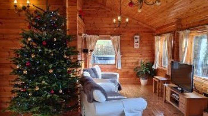 Cefn-nant Lodge, sleeps  4,  luxury log cabins, Powys
