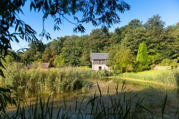 Pet-friendly for 2 in Suffolk, East Anglia