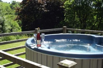 Holiday rental with Hot Tub Access   in Mid Wales