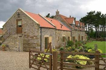 Cottage for couples in North East Coast (Yorkshire)