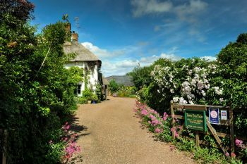 Cottage with a spacious bed for couples in South West, West Country, Quantock Hills