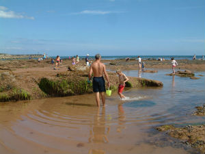 Family rockpooling by the seaside