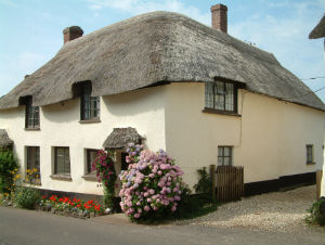 Picture-perfect Devon thatched cottage