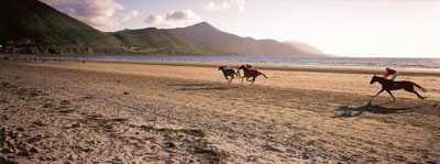 Watch Horse Racing on Holiday in Co. Killarney