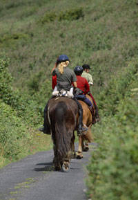 Cottages and self-catering holidays with horse riding nearby